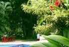Aberdare Tropical landscaping 17