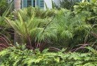 Aberdare Tropical landscaping 2