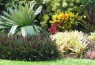 Aberdare Tropical landscaping 9